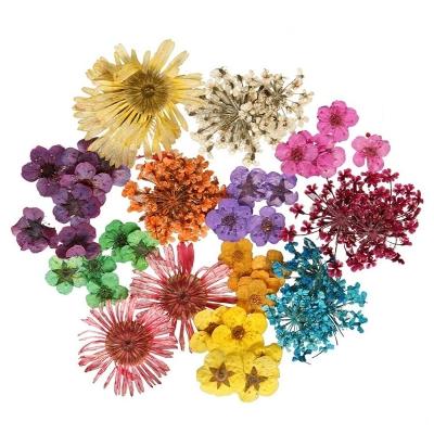 15 Aprile 2018 – Vendita fiori per Bait